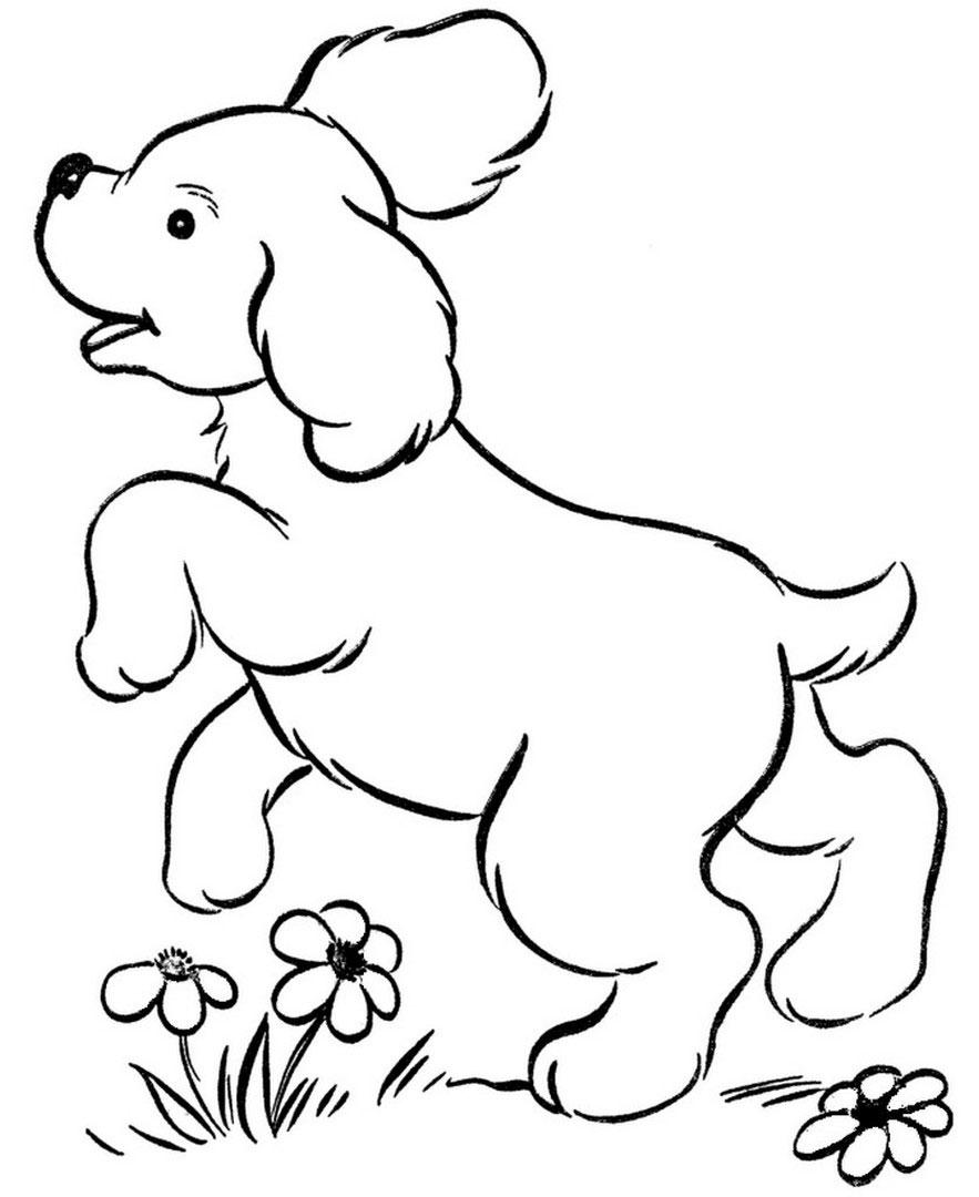 Colorare Cani Pastoorvanarskijkduin