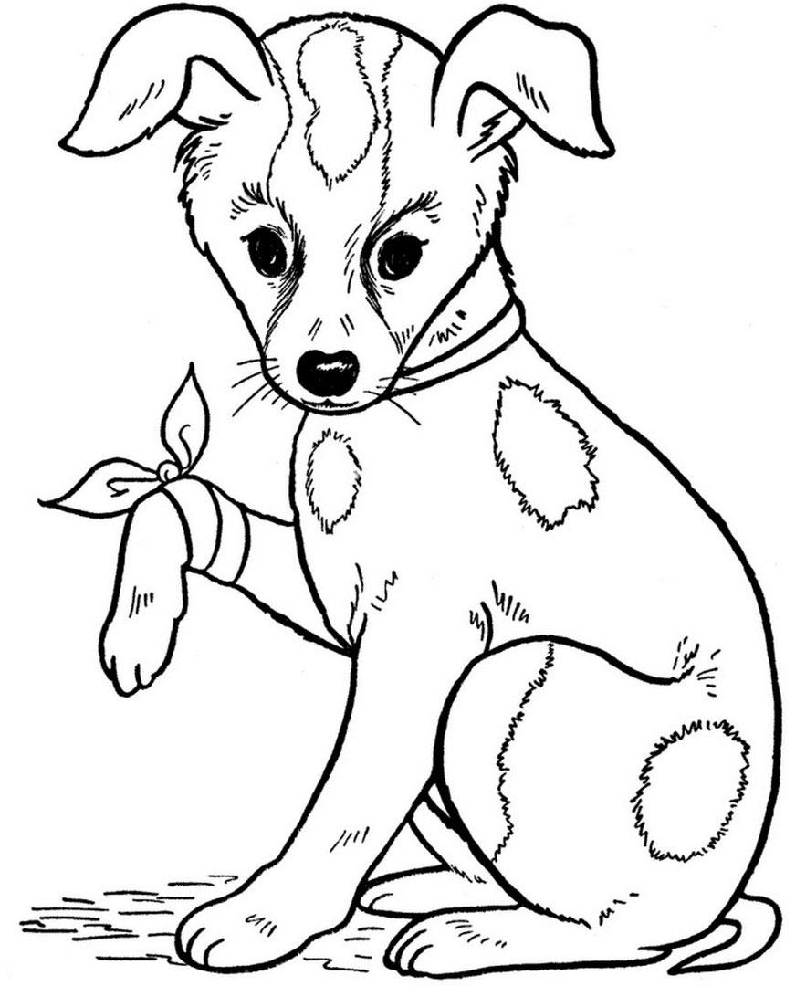 Cani - Cane da colorare le pagine libero ...