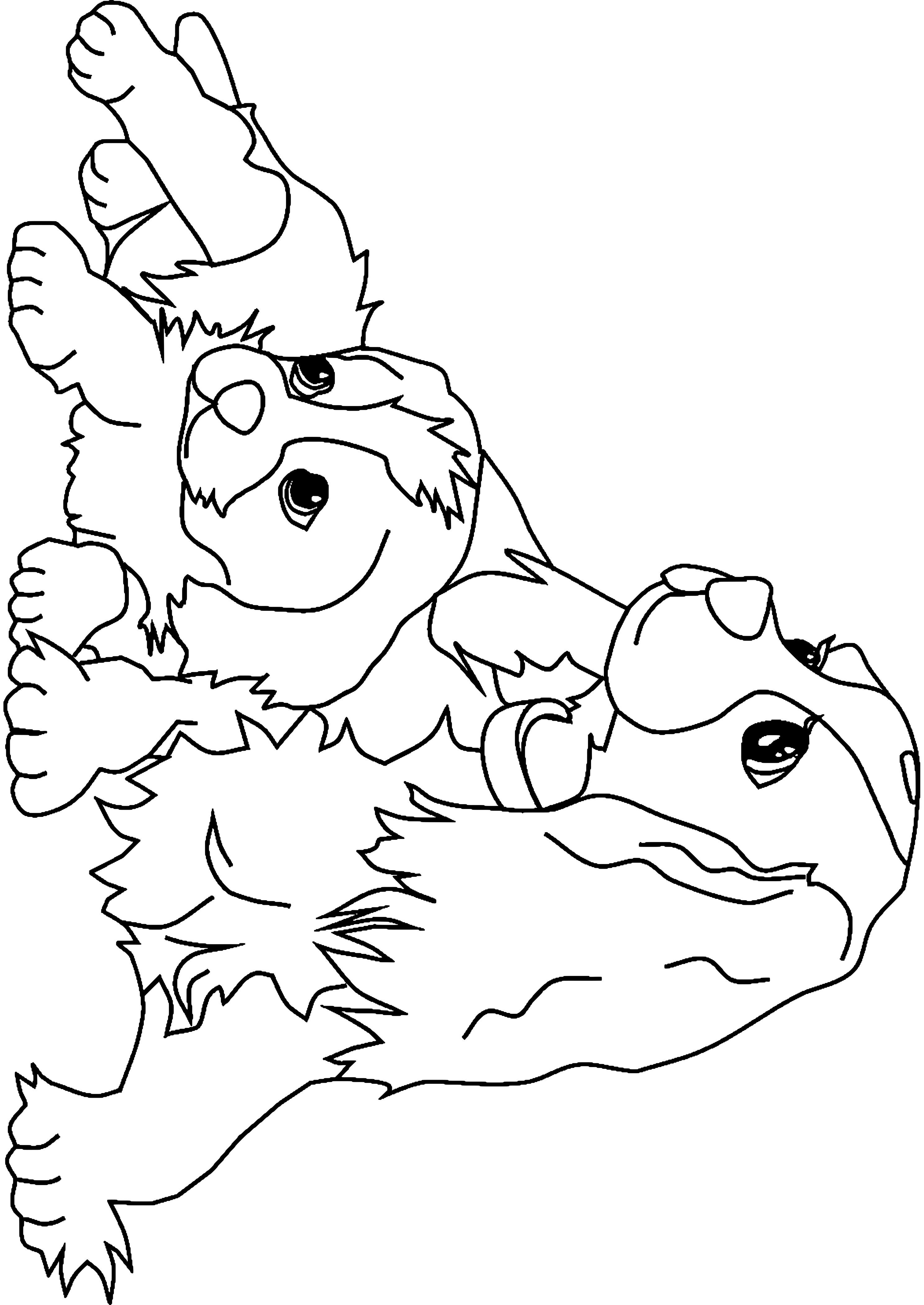 Il meglio di disegni da colorare cani cuccioli chihuahua for Disegni da stampare e colorare di cani
